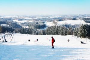 Region_ski